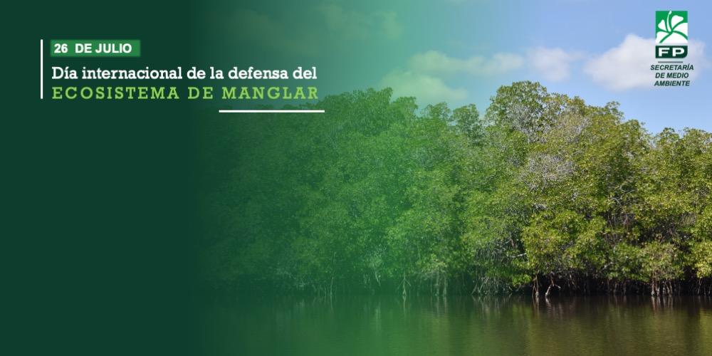 Día Internacional de la Defensa del Ecosistema de Manglar
